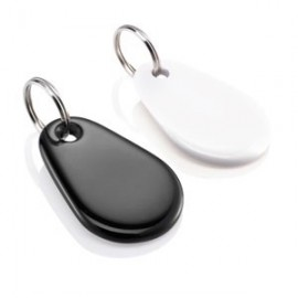 Lot de 2 badges pour clavier d'alarme