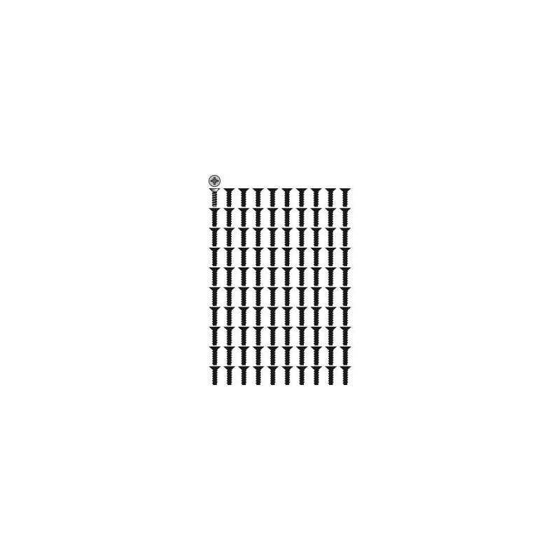 Sachet 100 VIS plastites 5x16